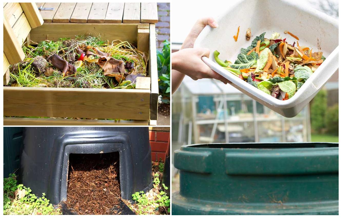 Obraz z przykładami kompostowania